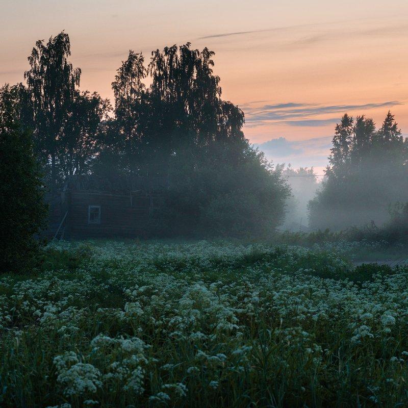 великий двор,вологодчина,кема,север,лето, Ночь.photo preview