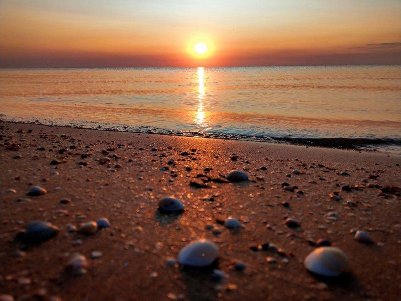 утро,рассвет,море,солнце,пейзаж,цвет,sunrise Марсианский рассветphoto preview