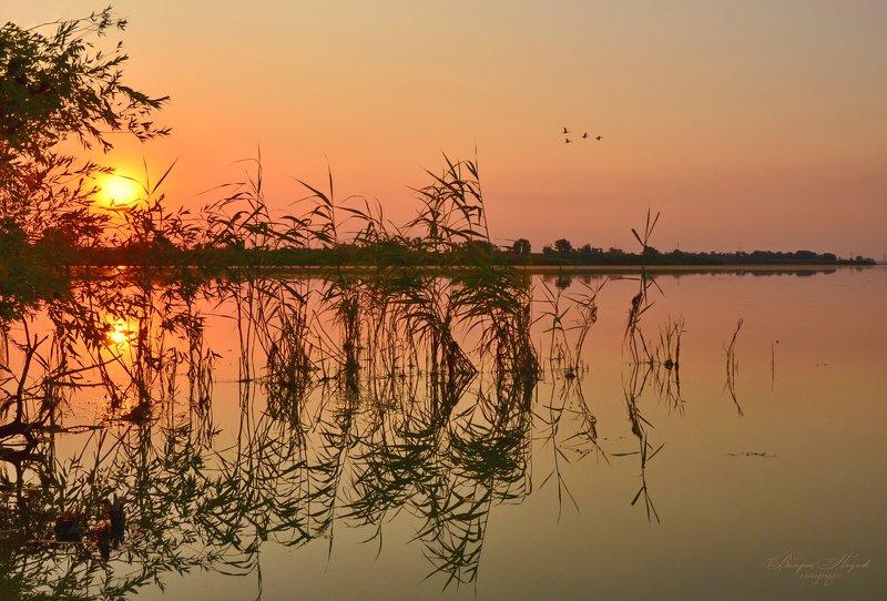 закат, вечер, июль, река Закатов летних колдовствоphoto preview