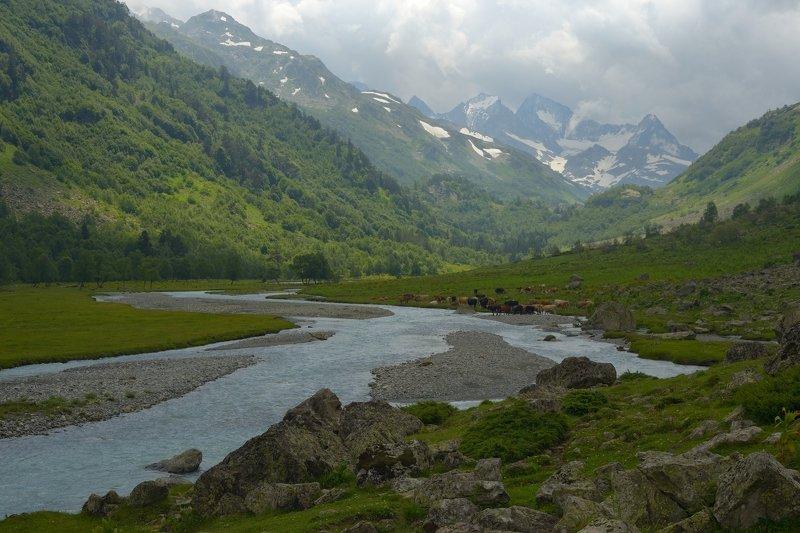 горы лето кавказ река  маруха Марухское ущельеphoto preview