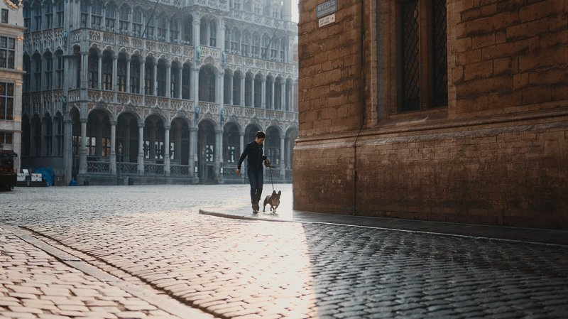 dog, woman, female, walking, square, brussel, belgium, sun, shadow, light, morning, cinematic, cine, colors, colorgrade, colorgrading, film look Woman with a dogphoto preview
