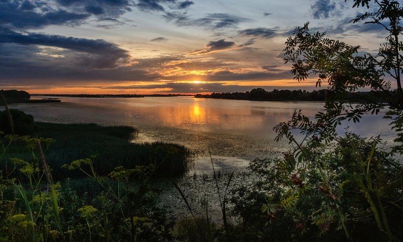 псковская, великая, лето, река, закат, краски, деревья Закатphoto preview
