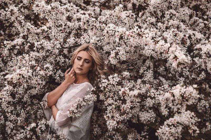 portrait, female, trees, nature, sun, portraiture, blossom Blossomphoto preview