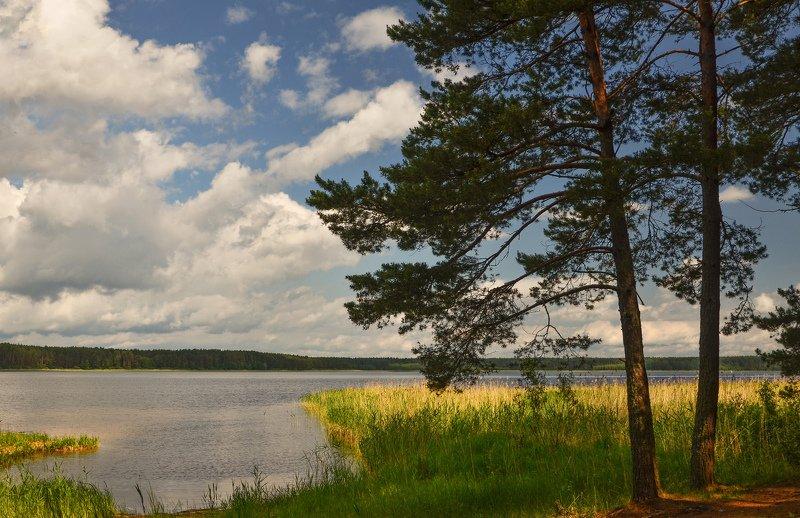 nevant60, пейзаж, красота, природа,селигер,озеро Озеро Селигерphoto preview