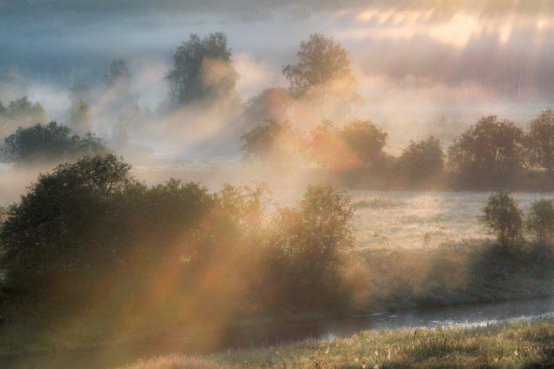 Июльские туманы.photo preview
