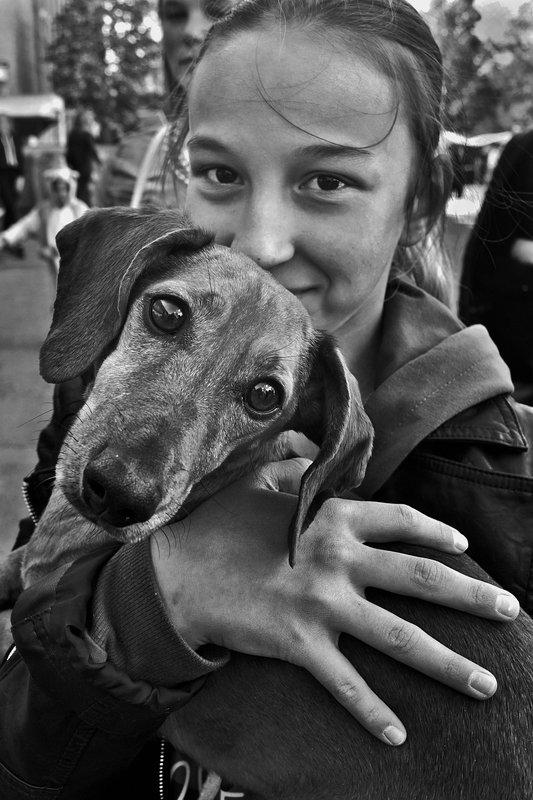 собака, портрет, девочка, глаза, взгляд, чб, апатиты Сама добротаphoto preview