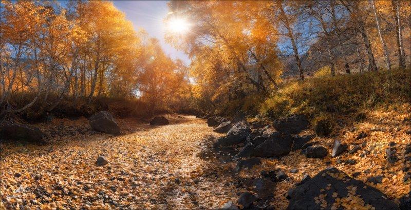 алтай, чулышман, осень, фототур на алтай, фототуры по россии, phototravel.pro На Чулышмане в октябре ...photo preview