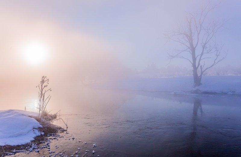 утро, зима, туман, солнце, рассвет, река Рассвет на рекеphoto preview