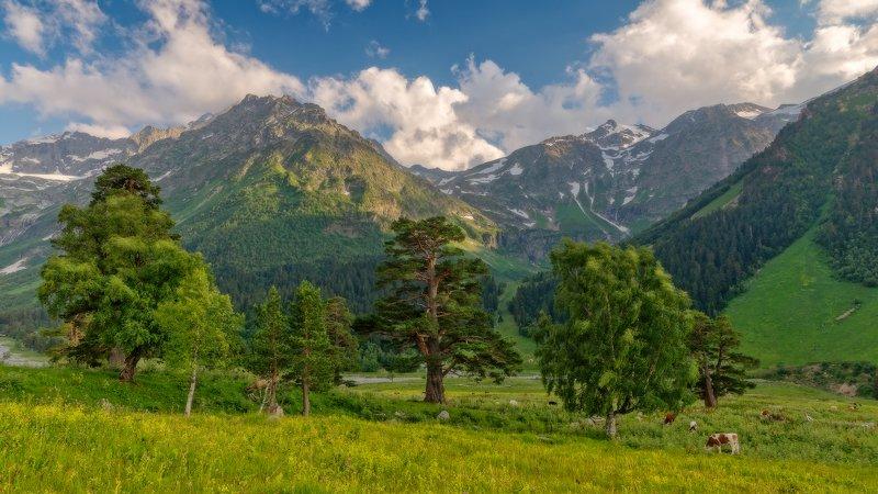 крч , архыз Кавказphoto preview