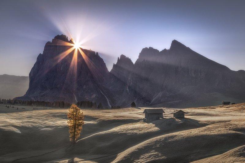 Magic of Alpe di Siusi фото превью