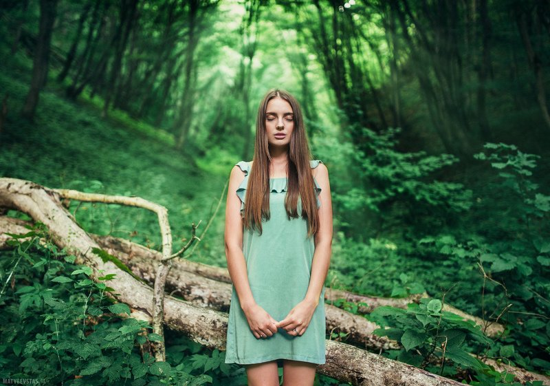лес, forest, лучи, rays, трава, grass, модель, model Deep in the forestphoto preview