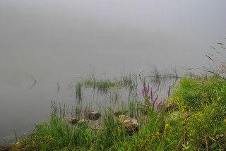 По берегу в туман.