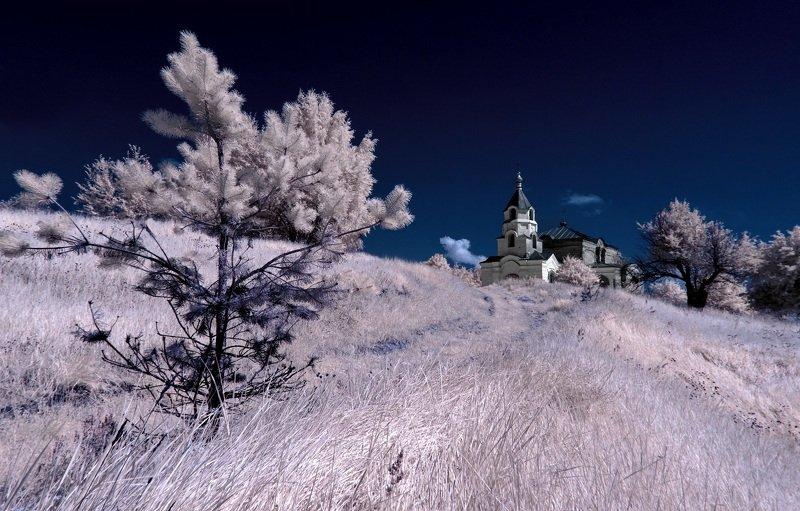 infrared,ик-фото,инфракрасное фото, инфракрасная фотография, пейзаж, лето Деревенская пастораль.photo preview