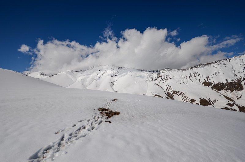 горы, снег, весна Снежные поляphoto preview