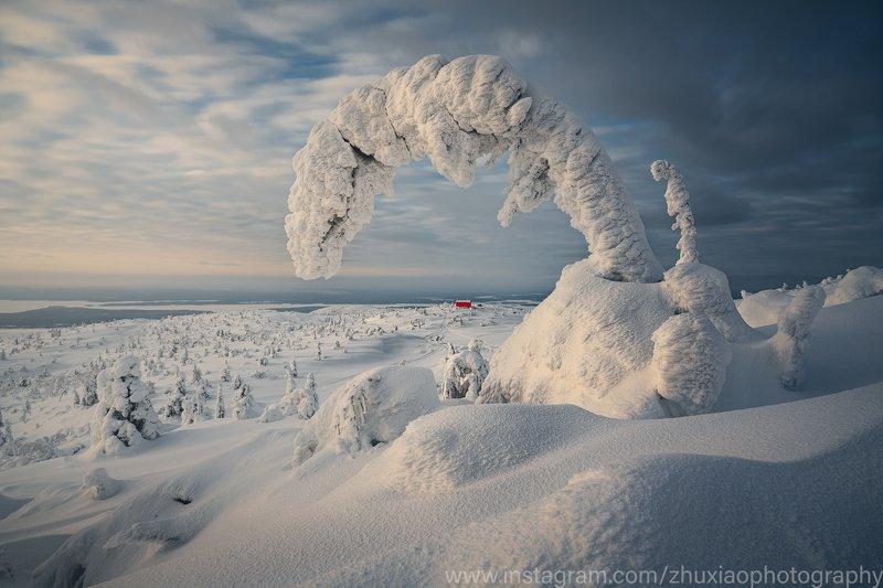 зима Ледяной и снежный мирphoto preview