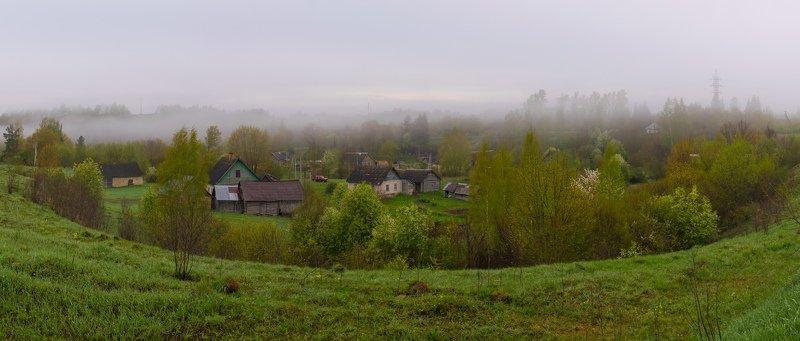 псков, деревня, коломно, туман, природа д. Коломноphoto preview