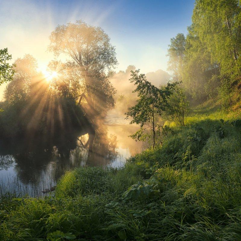 туман, река, солнце, рассвет Рассвет на реке Немдежphoto preview