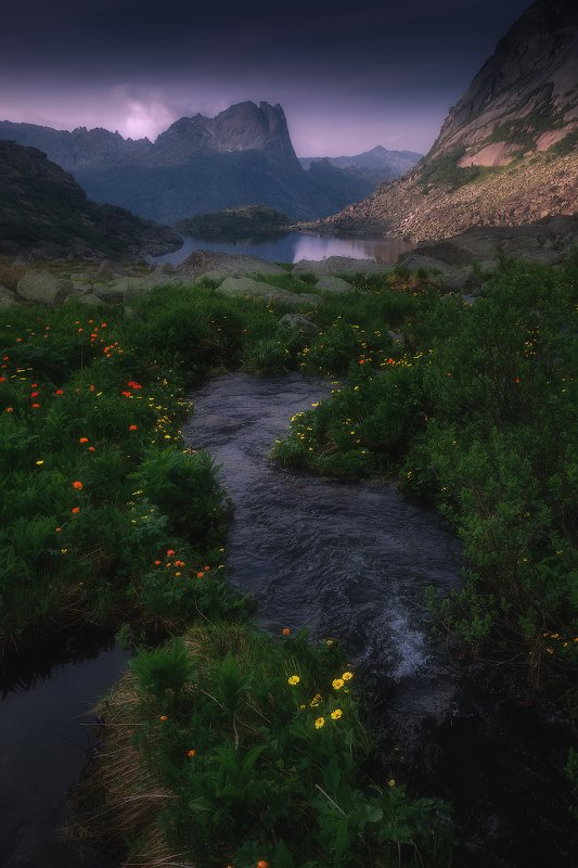 ергаки, горы, саяны, западныйсаян, сибирь, фототур Ну горном ручье фото превью