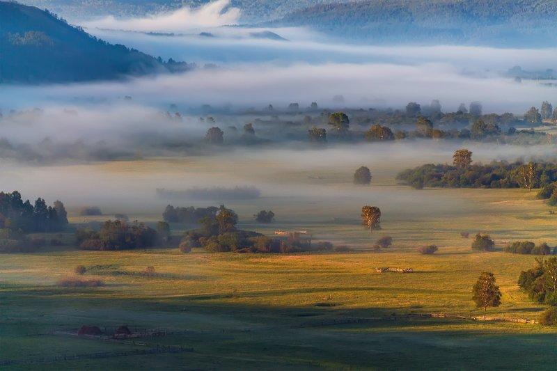 утро, рассвет, восход, туман, лучи Туман-туманищеphoto preview