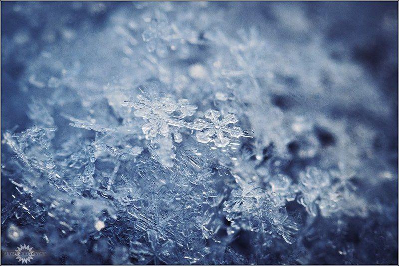 снег, кристаллы, природа, красота, макро Снег нападал за окошкомphoto preview