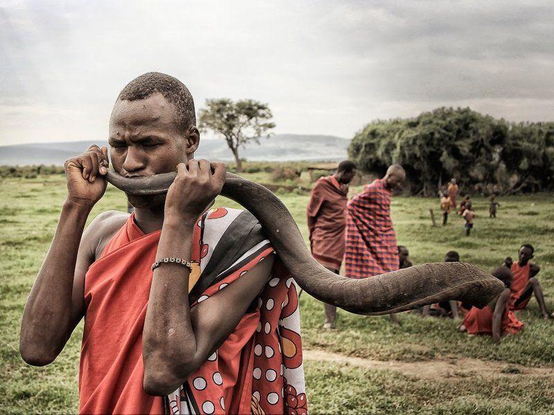 кения, африка, масаи, мара, рог, куду, масай \