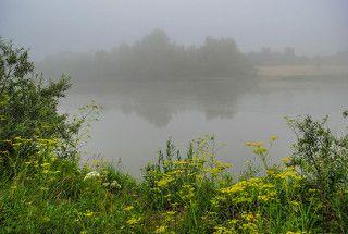 Июльский туман.