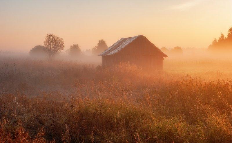 рассвет, поле, сарай, солнце Тверские рассветы.photo preview