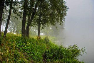 Вдоль тумана по рыбацкой тропе.