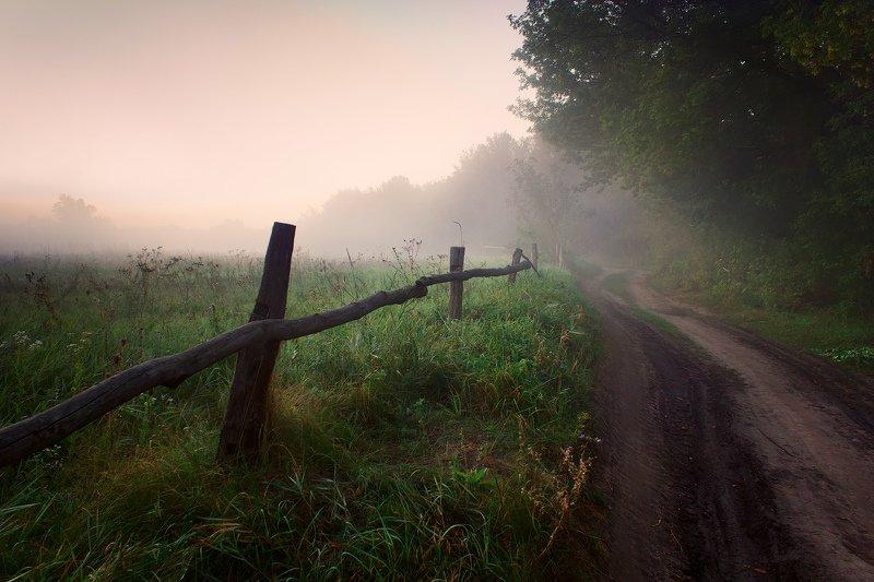 туман, дорога, лето, пезаж, утро, fog, road, summer, morning, morning Летний туманphoto preview