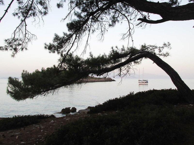море, берег, дерево, лодка, парусник, средиземное море Средиземное мореphoto preview