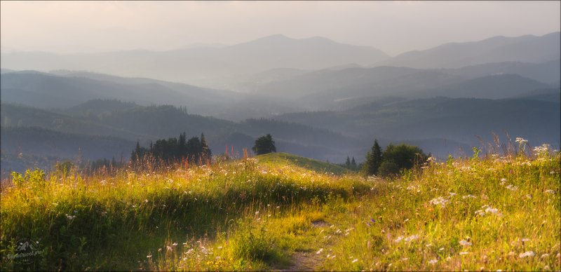 Карпаты, Закарпатье, Лето в Закарпатье ..photo preview