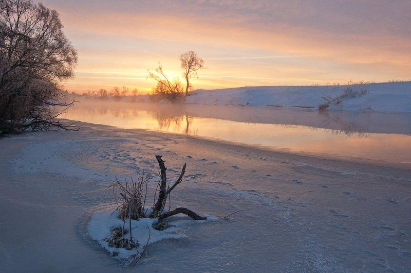 утро, река, упа, пейзаж, якшино Краски утраphoto preview