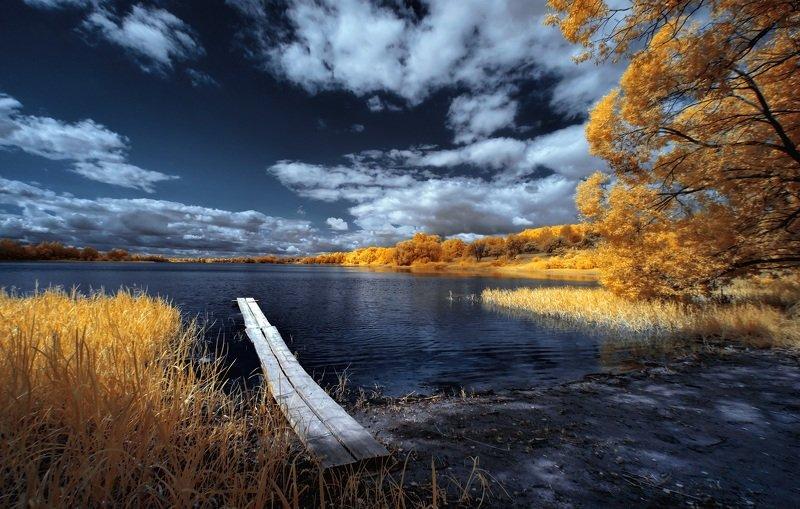 infrared,ик-фото,инфракрасное фото, инфракрасная фотография, пейзаж, лето Берег теплого дня.photo preview