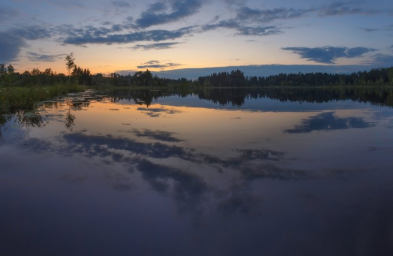 закат, питер, луга Летний закатphoto preview