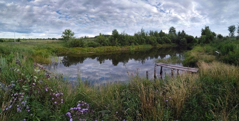 пруд,лето,деревня, Деревенские мотивыphoto preview