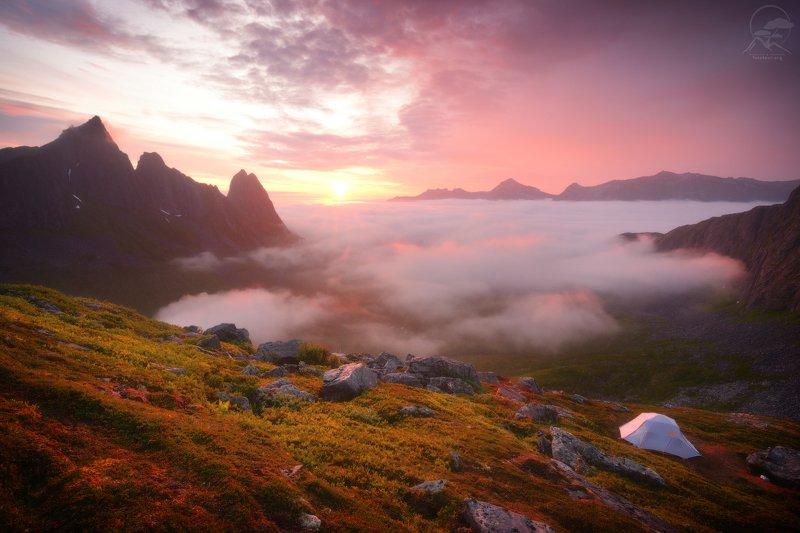 пейзаж, природа, море, норвегия, сенья Рассветный час на острове фото превью