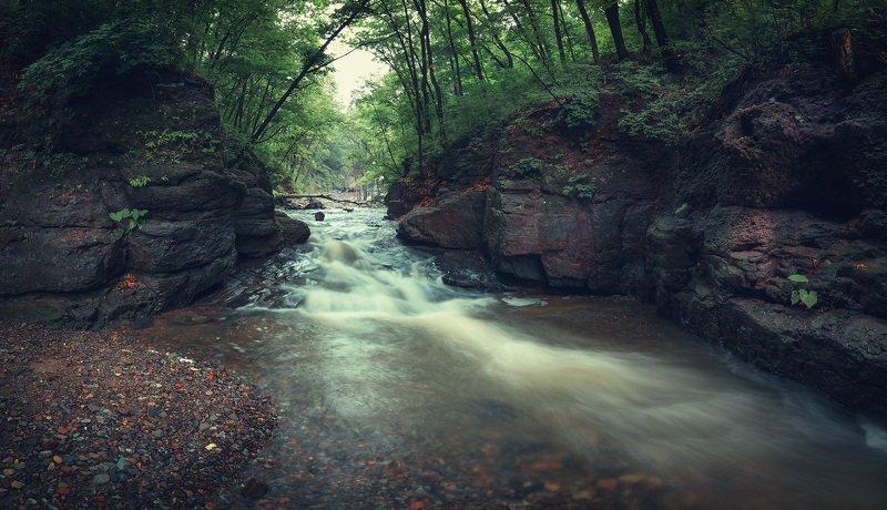 панорама, лес,камни ***photo preview