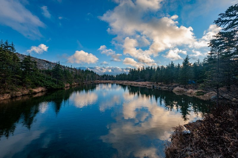 Nature, Forest, Tree, Landscape, Water, Lake, Scenics, Outdoors, Mountain, Sky, Reflection, Summer, Beauty In Nature, Blue, Rock - Object, Green Color, Travel, Tranquil Scene, Autumn Горное озероphoto preview