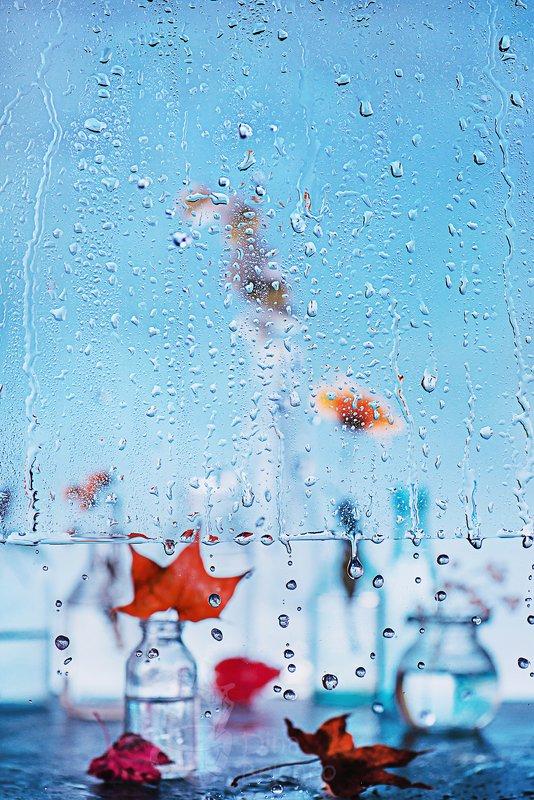 Rainy dayphoto preview