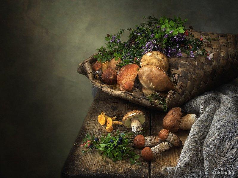 натюрморт, лето, грибы, ретро, винтажный натюрморт,  Грибной коробphoto preview