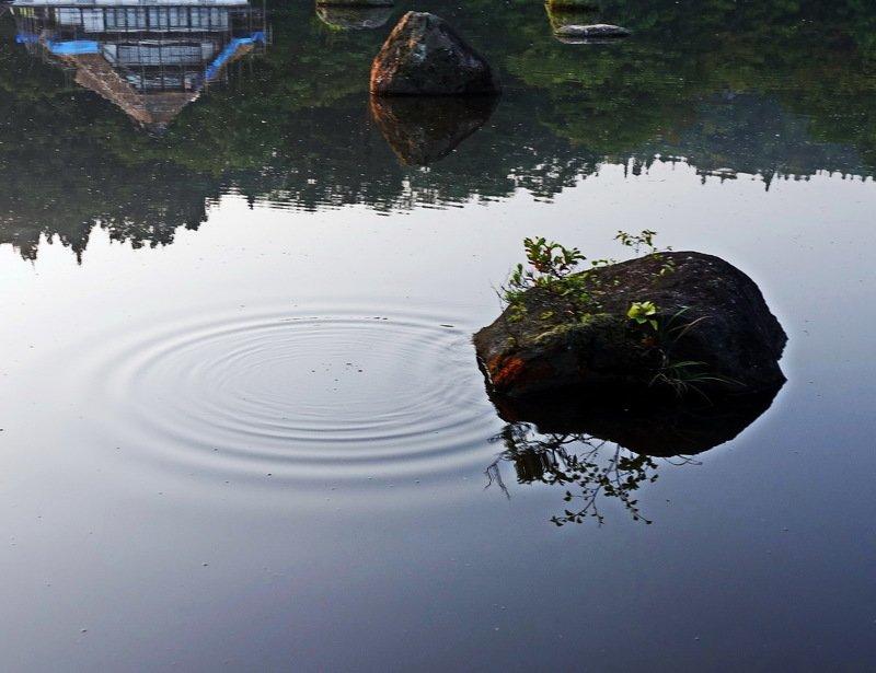 zen lake photo preview