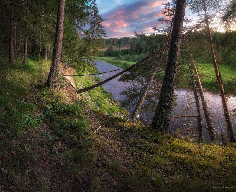 закат, поле, лето, вечер, река, лес На излучине рекиphoto preview