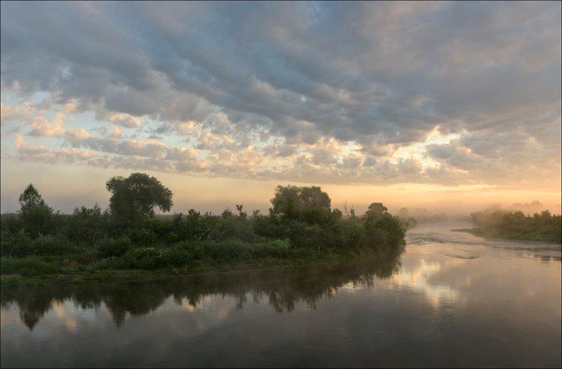 Август, утро, туман.photo preview