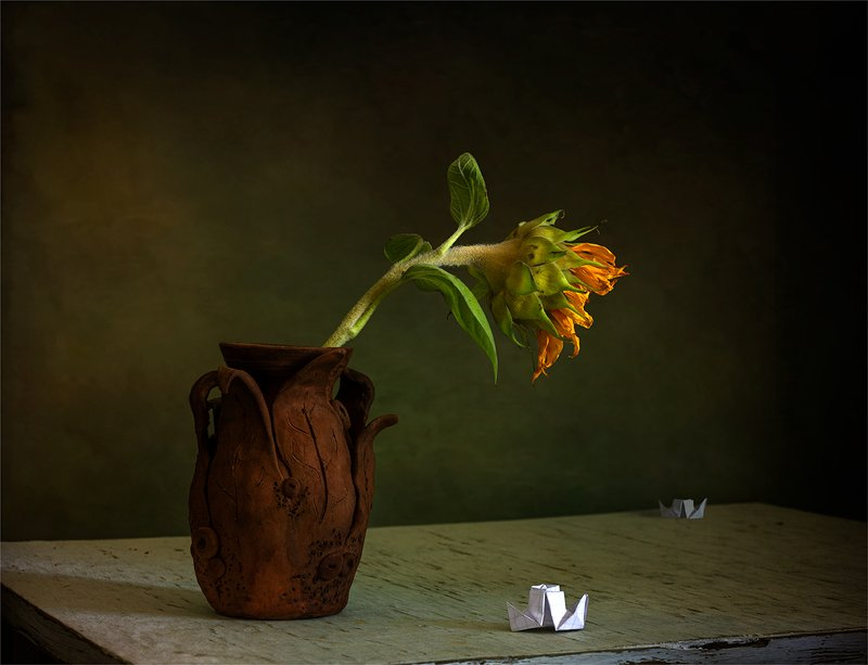 still life, натюрморт,    винтаж,    цветы,  подсолнух, лепесток,  ретро, минимализм, бумажный кораблик натюрморт с бумажным корабликом и подсолнухомphoto preview