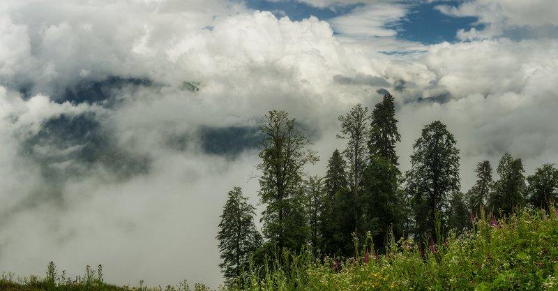 Где-то в облакахphoto preview