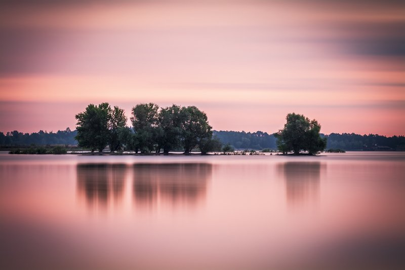 sunset, water, sky, cloud, reflection, lake, tree Trees on the waterphoto preview