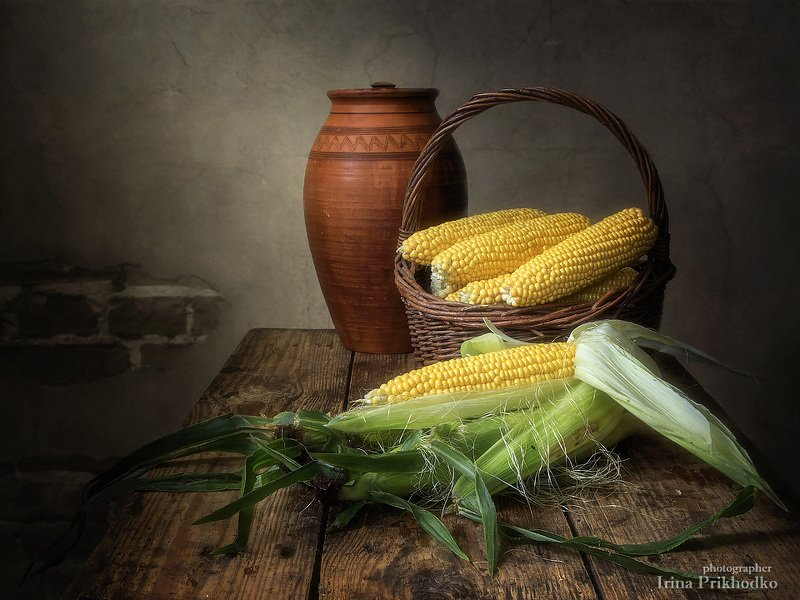 натюрморт, урожай, кукуруза, початки, винтажный натюрморт, деревенский стиль Натюрморт с початками кукурузыphoto preview