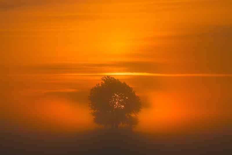 landscape,canon,mist,light,summer Summertime...photo preview