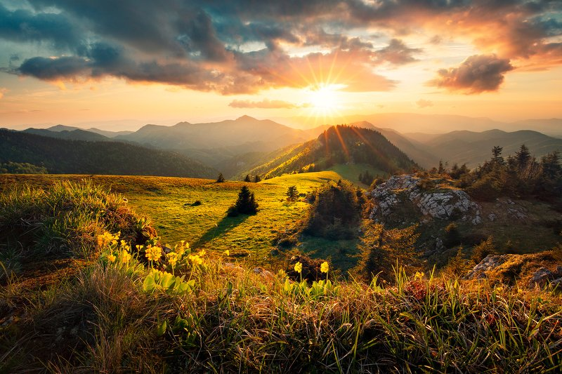 velka fatra, sunset, evening, mountain, meadow, rock, clouds, sky, flower, trees, hills, Velka Fatraphoto preview