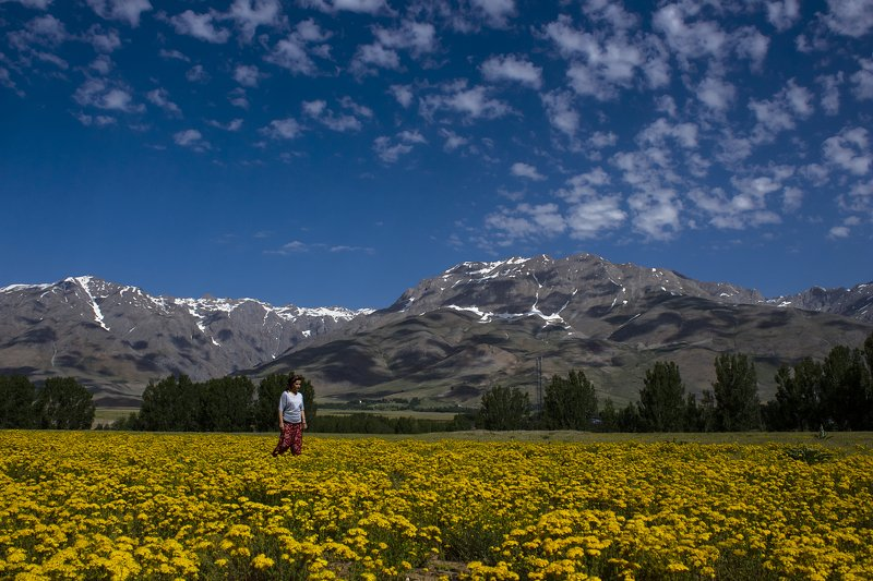 landscape,view,spring,art,travel,colors,dreams,freedom,passion,peace,clouds,mountains,photography, SPRINGphoto preview